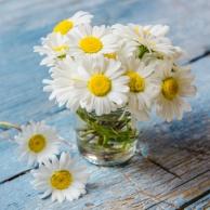 ... und sei er noch so klein - frische Blumen erfreuen