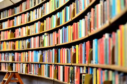 Viele Bücher - viel Wissen?