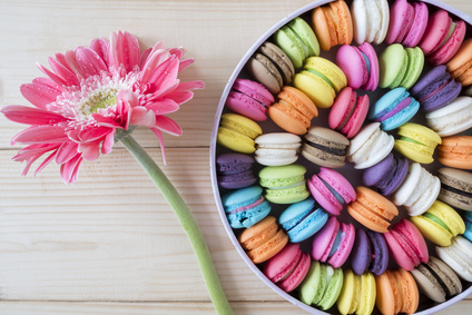 Close up French colorful macarons and pink flower on wood background