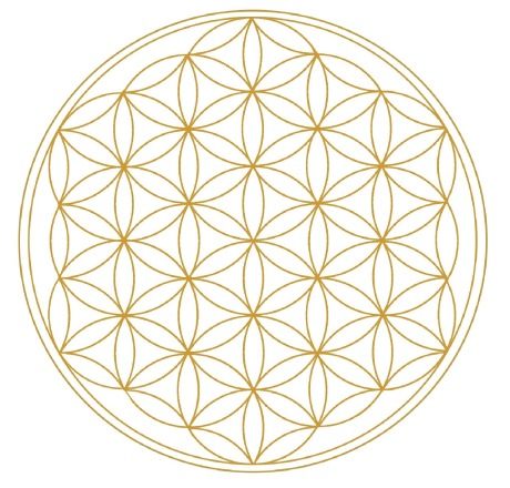 die Blume des Lebens - wir sind alle Teil der Matrix